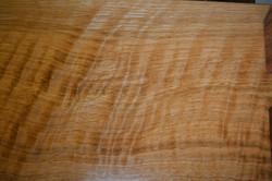 Curly White Oak