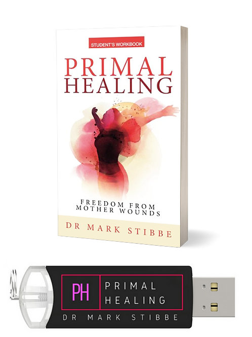 Primal Healing Bundle: Flash Drive & Workbook