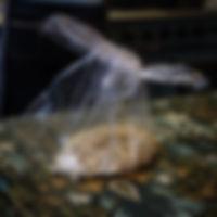 Ramen noodle in transparent plastic bag - photograph by Pak Keung Wan