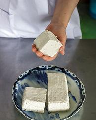 Tofu in a hand