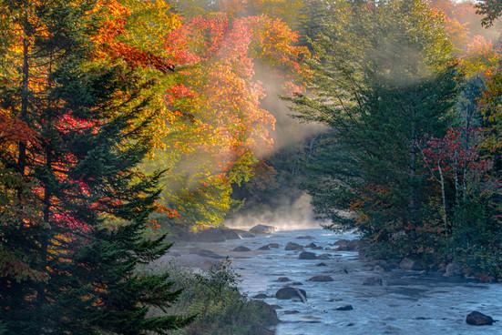 WoW_Adirondack_Park_0007.jpg