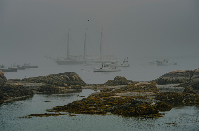 Coastal Maine_0004.jpg