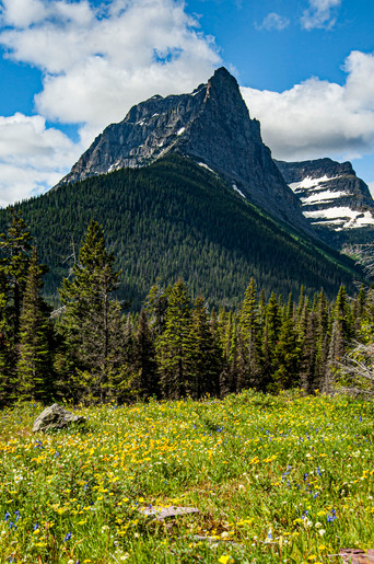 Glacier_NP_0006.jpg