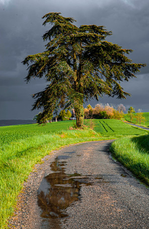 France_0025.jpg