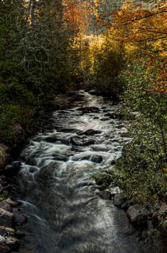 WoW_Adirondack_Park_0001.jpg