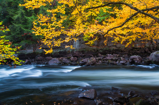 WoW_Adirondack_Park_0005.jpg