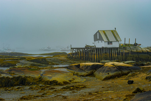 Coastal Maine_0003.jpg