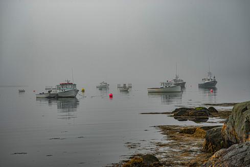 Coastal Maine_0002.jpg