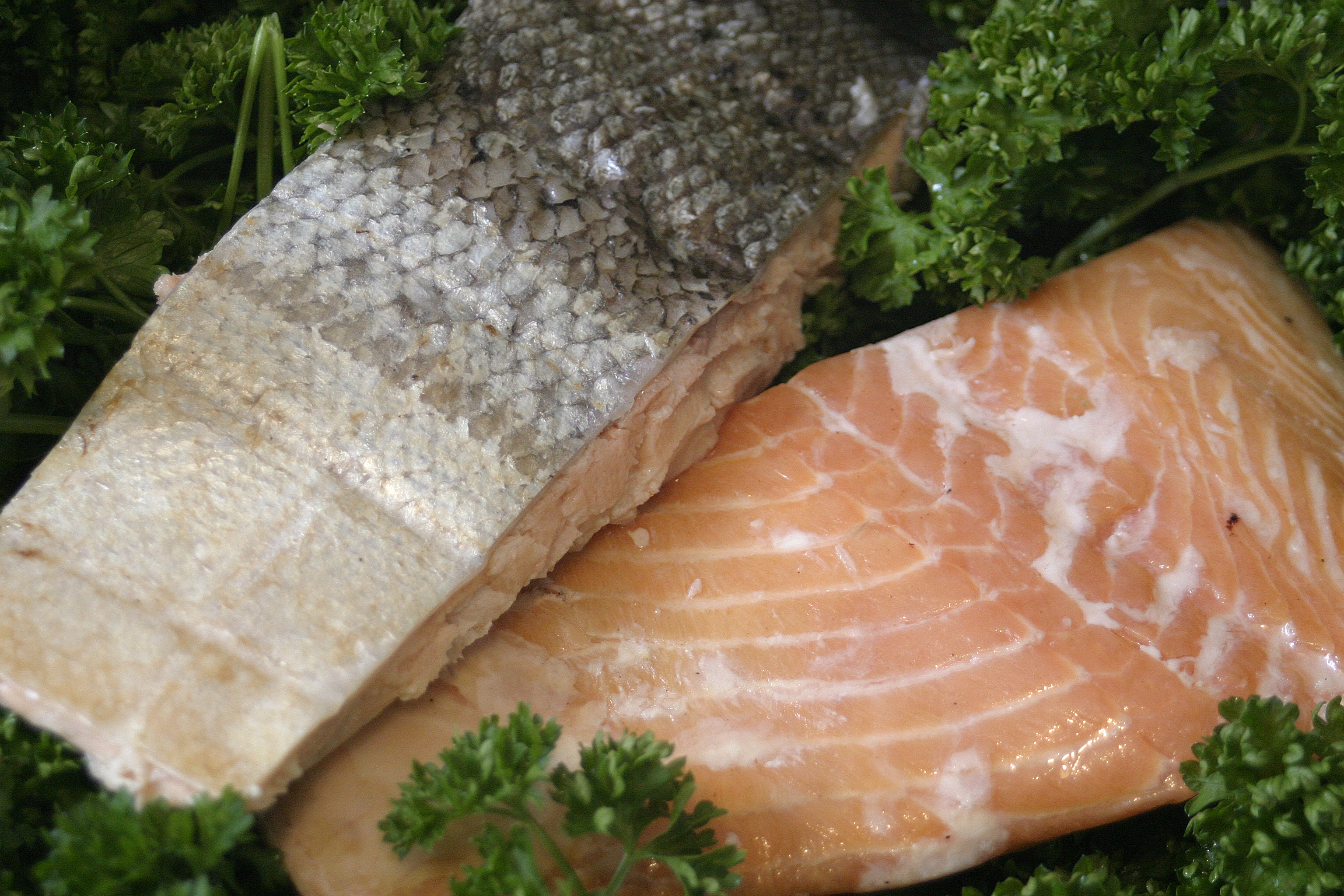 Oak Smoked Trout Fillets