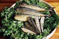 OAk Smoked Mackerel and Sardines