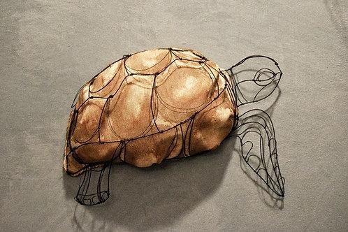 Scultura in fil di ferro (Tartaruga) | Wire Sculpture (Turtle)