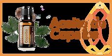 Aceite-de-copaiba.png