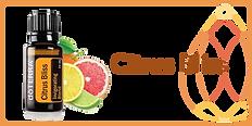 citrus-bliss.png