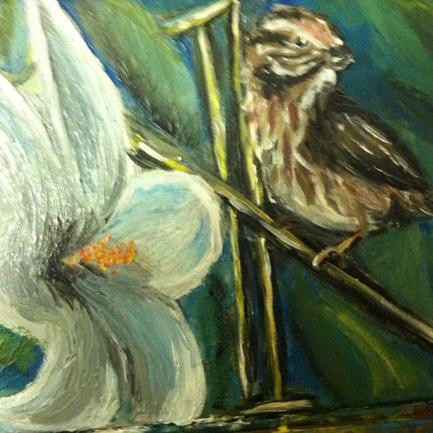 Lilies and Sparrows