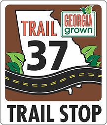 trail 37.jpg