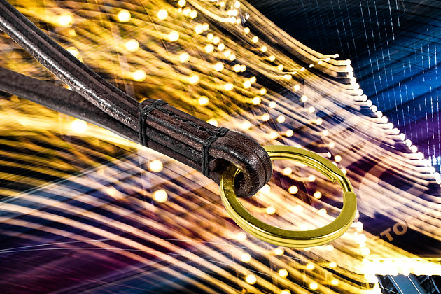 Dark Brown Long Keychain
