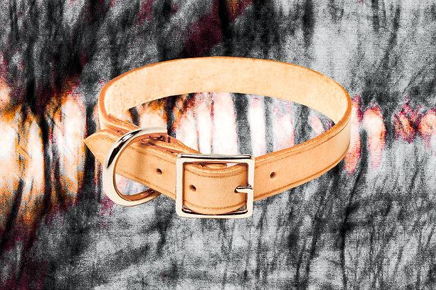 Small/Medium Tan Dog Collar