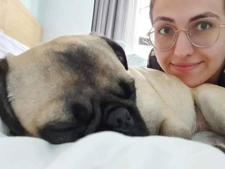 """L'histoire de Ludovica, bloquée avec son chien: """"Ils voulaient le tuer"""""""