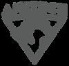 Logotype_Anitech_Gris.png