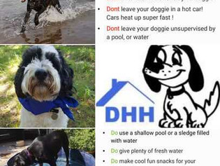 Do's and Dont's this summer