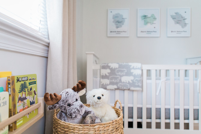 NATIONAL PARKS THEME NURSERY | LIFESTYLE SESSION