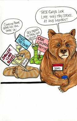 bear vs teacher