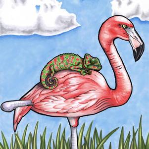 Pink Piggyback