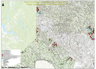 Opérations forestières 2020-21  Nord-Ouest du N.-B.