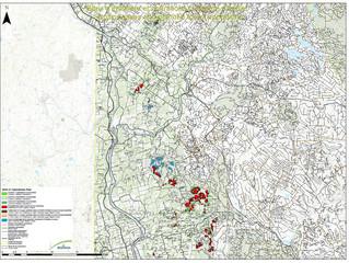 Harvesting - Operation Plan for 2020-21                           Grand Falls to Juniper