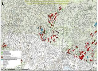 Opérations forestières 2020-21                         Saint-Quentin à Kedgwick Ouest