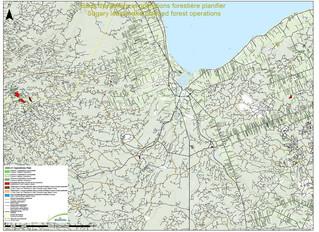 Opérations forestières 2020-21      Bathurst