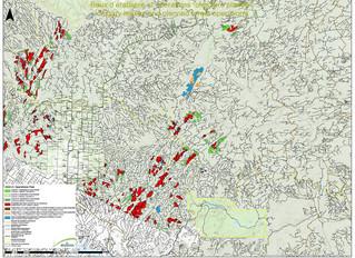 Opérations forestières 2020-21                              Saint-Quentin, Kedgwick Est