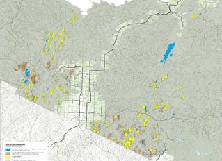 Récolte de bois - Opérations forestières           Nord du N.-B.