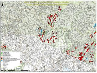 Harvesting - Operation Plan 2020-21                                    Saint-Quentin / Kedgwick West