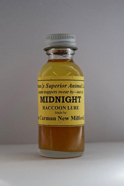 Midnight Raccoon