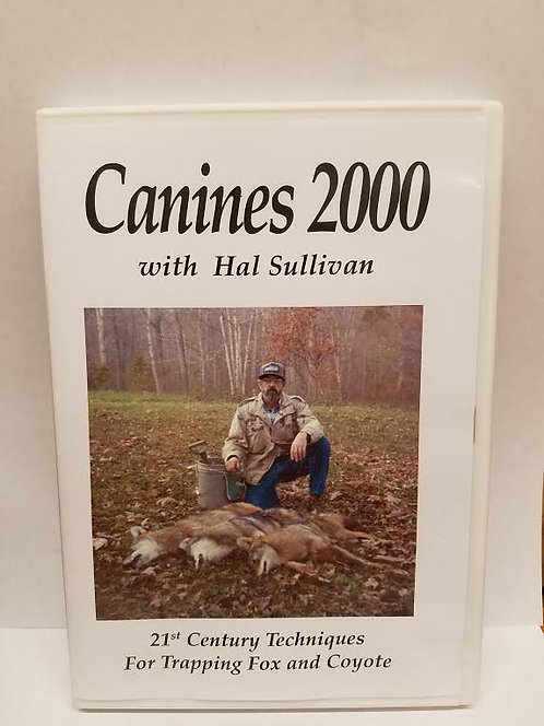 Canines 2000 by Sullivan (DVD)