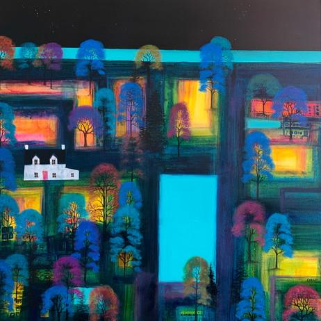 'Midnight Fields'
