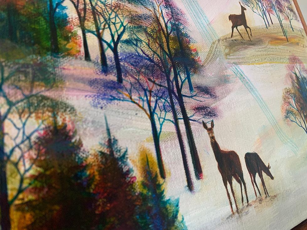 'A Warm Winter's Night' by Erraid Gaskell