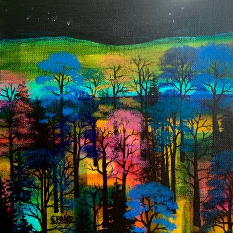 'A Wee Woodland Walk'