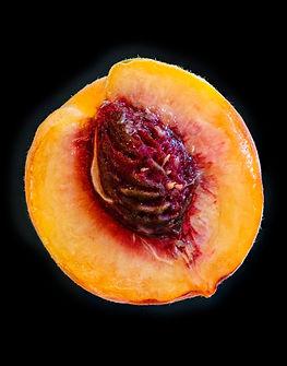 peach copy 8x10.jpg