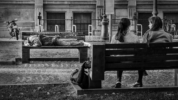 man on bench crop.jpg