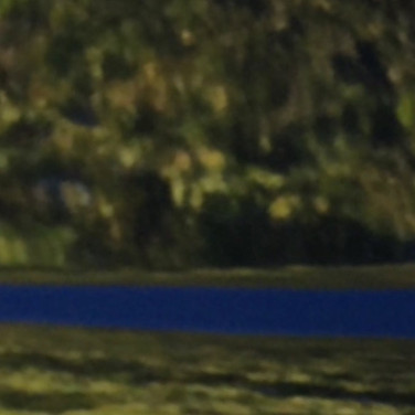 Woodland verydeep blue blue stream (Car door zoom)