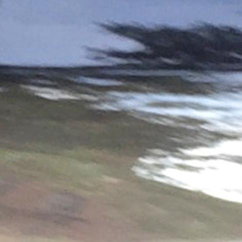 Taiga edge (Nissan hood zoom)