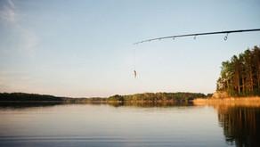 Osage Bluff Fishing Report 6/25/20