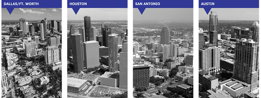 Wellington Realty Texas