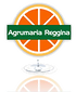 Agrumaria Reggina, Italty, Agri-food, Arotmatic compounds, citrus