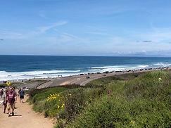 Running Torrey Pines Beach San Diego Cro