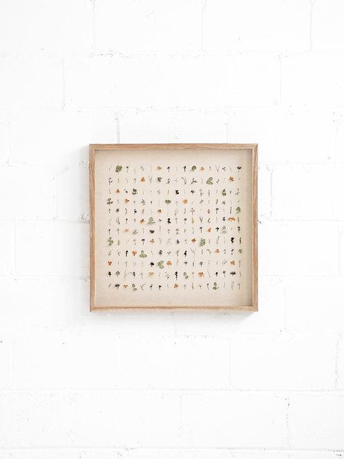 Dried Flora Composition - Grid