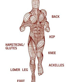Motion is Lotion - The Science behind our Fascia