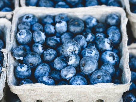 Blueberries - The Blue Gem of Nutrition